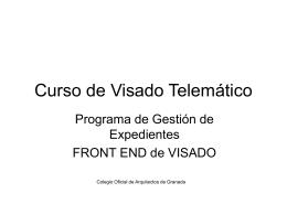Curso de Visado Telemático