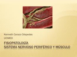 Fisiopatología sistema nervioso periférico y