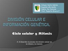 División celular e información genética.