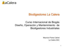 Proyecto MDL Biodigestores Proceso de Validación