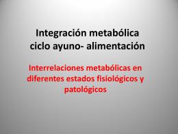 Integración metabólica ciclo ayuno