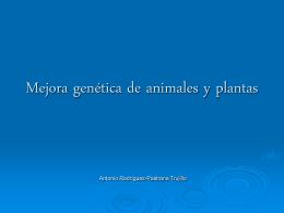 Mejora genética de animales y plantas