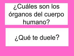 ¿Cuáles son los órganos del cuerpo humano?