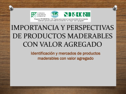IDENTIFICACIÓN DE NEGOCIOS DE VALOR AGREGADO