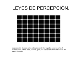 LEYES DE PERCEPCIÓN.