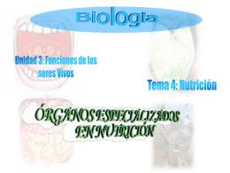 Órganos especializados en nutrición