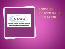 consejo provincial de educación ceAPI