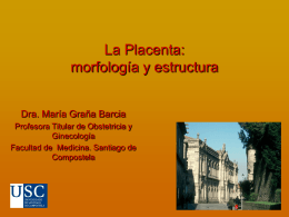 Diapositiva 1 - 3ºB Medicina USC | 2011-2017