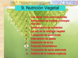 09. Nutrición vegetal