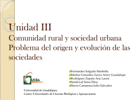 Sociedad rural (según gomezjara)