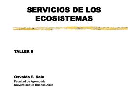 Restricciones estructurales y biogeoquímicas de la
