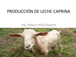 PRODUCCIÓN DE LECHE CAPRINA
