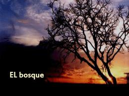 Presentacion El Bosque