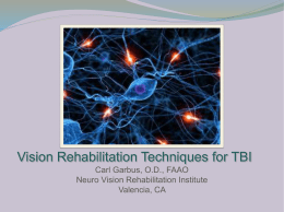 Vision Rehabilitation Strategies after TBI