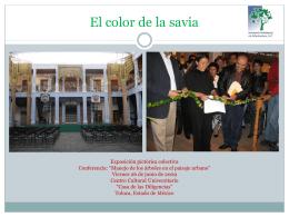 El color de la savia - AMA | Asociación Mexicana