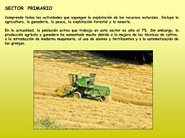 Sector Primario. Cultivos de secano y regadío.