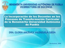 Implementación del Modelo Universitario Minerva