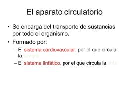 Tema 5: Anatomía y fisiología del aparato