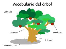 Vocabulario del árbol