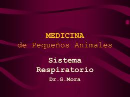 MEDICINA de Pequeños Animales