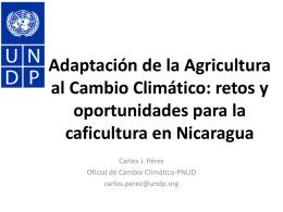 Reducción de Emisiones en Agricultura