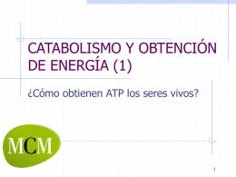CATABOLISMO Y OBTENCIÓN DE ENERGÍA (1)