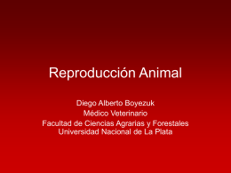 Reproducción Animal