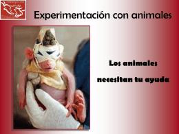 Experimentación con animales