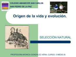 Origen de la vida y evolución. -