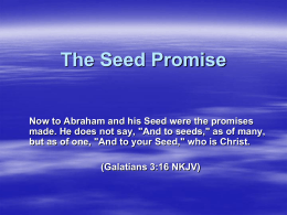 The Seed Promise - Church of Christ