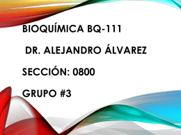 Bioquímica bq-111 Dr. Alejandro Álvarez Sección: