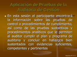 Aplicación de Pruebas de la Auditoría de Gestión