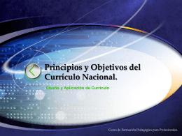Principios y Objetivos de Currículo Nacional.