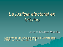 Tribunal Electoral: evolución, diagnóstico y