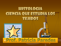 CHASKA PRODUCCIONES Y EL ÁREA DE CIENCIA,