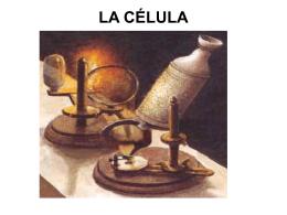 1.2. LA CÉLULA