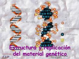 Tema 6: Estructura y replicación del material