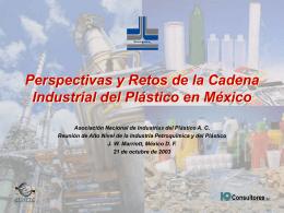 Perspectivas y Retos de la Cadena Industrial del
