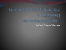 Lesión Cerebral Traumática y Trastornos