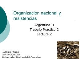 Organización nacional y resistencias