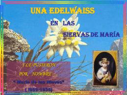 Diapositiva 1 - Siervas de María, al servicio de