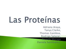 Las Proteínas