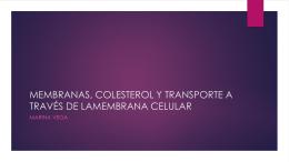 MEMBRANAS, COLESTEROL Y TRANSPORTE A TRAVÉS DE