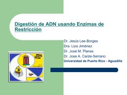 Digestión de DNA usando Enzimas de Restricción