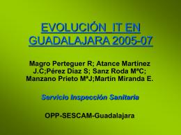 EVOLUCIÓN IT EN GUADALAJARA 2004-07