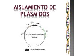 Práctica - Bioquimexperimental