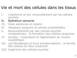 22 - Vie et mort des cellules dans les tissus
