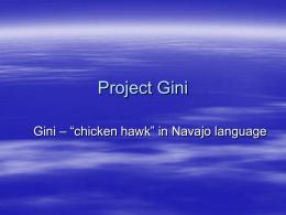 Project Gini - General Numerics LLC