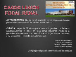 CASOS LESIÓN FOCAL RENAL