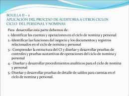 BOLILLA II – 2 APLICACIÓN DEL PROCESO DE AUDITORIA